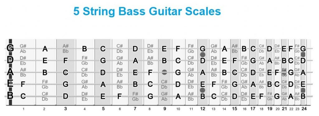 Bass Guitar Scale